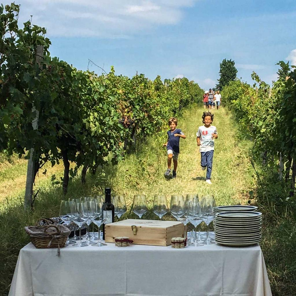 Events and tastings - Vignabaldo Group Umbria Italy
